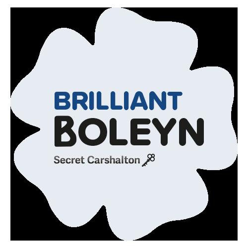Brilliant Boleyn Logo